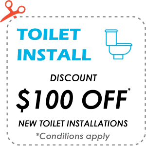 toilet-install-special